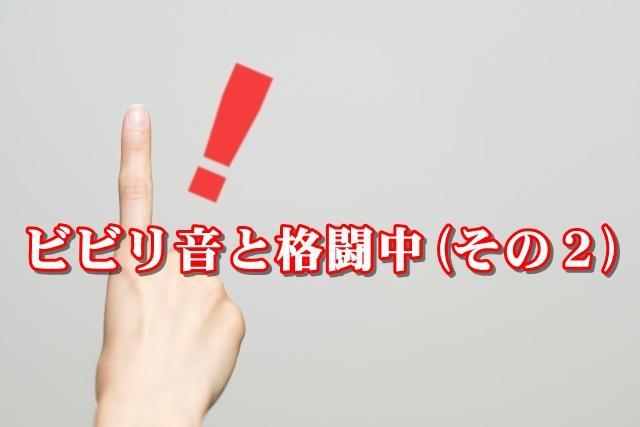 ビビリ音と格闘中(その2)